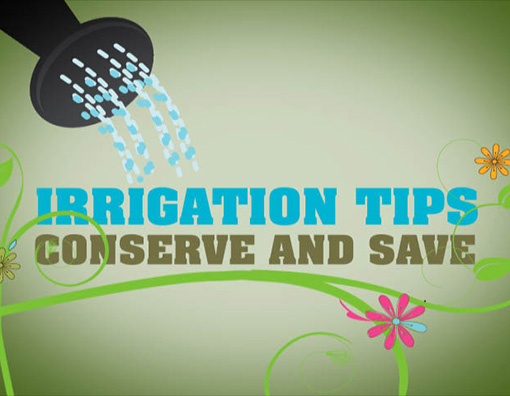 COMO Irrigation Tips – Motion